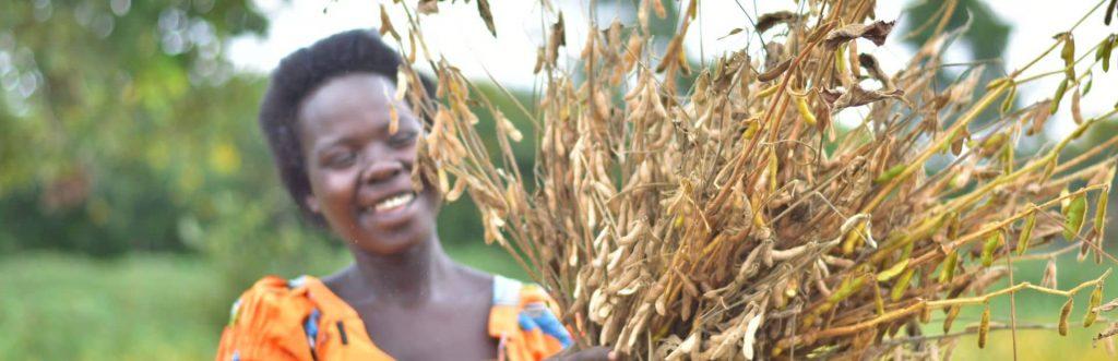 Brenda Akello met een bosje takken Heifer